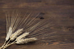 Wheat on wood. Wheat on dark wood background Royalty Free Stock Photography