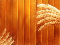 Wheat on wooden autumn background. EPS 10. Vector file included Royalty Free Stock Images