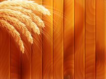 Wheat on wooden autumn background. EPS 10. Vector file included Stock Photos