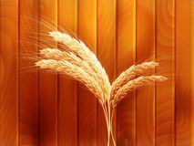 Wheat on wooden autumn background. EPS 10 Royalty Free Stock Photography