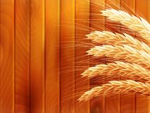 Wheat on wooden autumn background. EPS 10. Vector file included Royalty Free Stock Image