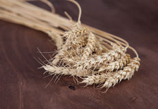 The wheat on wooden background Royalty Free Stock Image