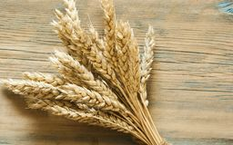 Wheat on wooden rustic background. top view with copy space Royalty Free Stock Photos