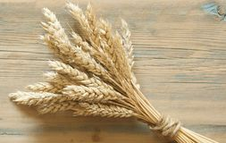 Wheat on wooden rustic background. top view with copy space Royalty Free Stock Photography