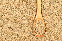 Wheat in wooden spoon Stock Image