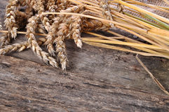 Wheat on the wooden table Royalty Free Stock Photography