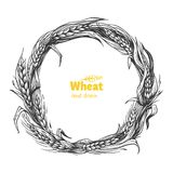 Wheat wreath hand drawn vector illustration Royalty Free Stock Images