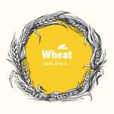 Wheat wreath hand drawn vector illustration Royalty Free Stock Image