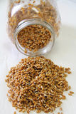 Wheatberries sprouted in a jar vertical Stock Image