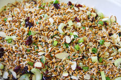 Wheatberry salad upclose Royalty Free Stock Photo