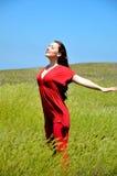 wheatears девушки Стоковая Фотография RF