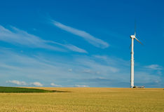 Wheaten field with a mill. Wheaten field with a mill in a clear flying weather Royalty Free Stock Image