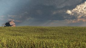 Wheatfield and Barn with Approaching Storm. Summer wheatfield and old half-timbered barn with storm clouds, 3d digitally rendered illustration Stock Image