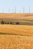 Wheatfields und Windfarms Stockfotografie