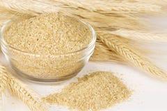 wheatgerm пшеницы Стоковые Фотографии RF