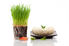 Wheatgrass and bar of soap Royalty Free Stock Photos