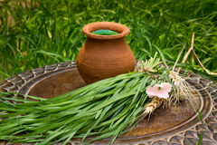 Wheatgrass juice in a clay pot on a brown wooden table Royalty Free Stock Images