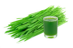 Wheatgrass juice Royalty Free Stock Photography