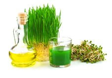 Wheatgrass juice with sprouted wheat and wheat germ oil Stock Photos