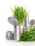 Wheatgrass nas latas de alumínio no branco Imagens de Stock Royalty Free