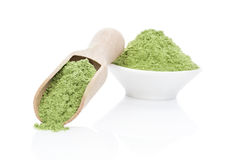 Wheatgrass powder. Ground wheat grass powder on wooden scoop and in bowl on white background. Healthy lifestyle. Green food supplement Royalty Free Stock Photos