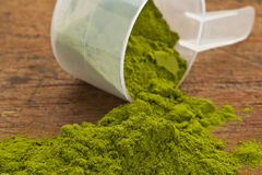 Wheatgrass powder supplement Royalty Free Stock Photos