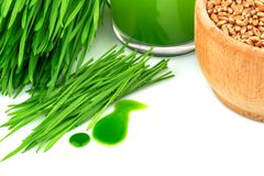 Wheatgrasssap, ontsproten tarwe en tarwe Stock Fotografie