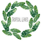 Wheath tropicale delle foglie dell'acquerello Immagini Stock