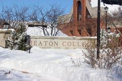 Wheaton à l'hiver Image libre de droits