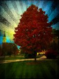 Wheaton College in the Fall Stock Photography