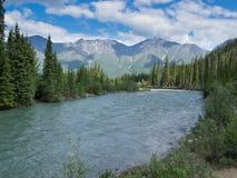 Wheaton River alpint dalYukon territorium Kanada Arkivbild