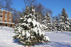 Wheaton am Winter Stockbild