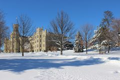Wheaton am Winter Lizenzfreie Stockbilder