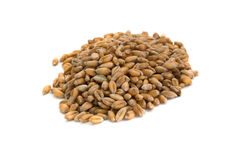 Wheats heap Stock Image