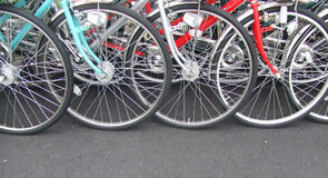 Wheel. Bicycle Wheels Stock Image
