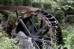 Wheel, Automotive Tire, Tire, Tree Royalty Free Stock Image