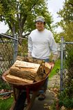 Wheel Barrel Full Of Firewood Stock Photo