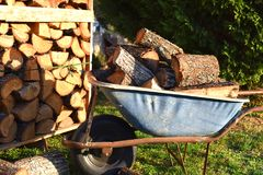 Wheel barrow full of woods in the garden royalty free stock images