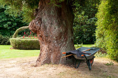 Wheel Barrow by Tree Stock Photos