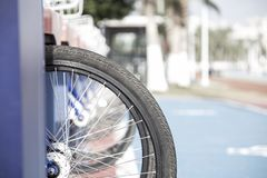 Wheel of bicycle royalty free stock photo