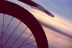 A wheel of bicycle in the evening. The sunset light royalty free stock image