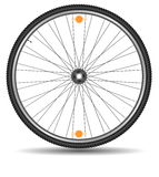Wheel of bicycle Royalty Free Stock Images