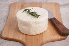Wheel of brazilian traditional cheese Minas Stock Image