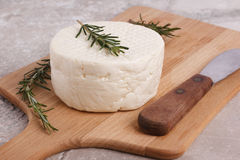 Wheel of brazilian traditional cheese Minas Stock Images