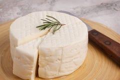 Wheel of brazilian traditional cheese Minas Royalty Free Stock Image