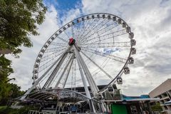 The Wheel of Brisbane on the South Bank. royalty free stock image