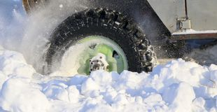 The wheel of the car is stuck in the snow. spray of snow from the rotating wheel of winter tires. slipping machine in the snow. th. Wheel of  car is stuck in Stock Photo
