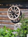 The wheel of cart. On the wooden wall Royalty Free Stock Photo