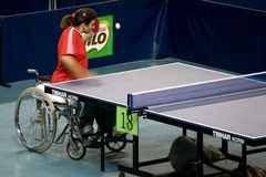 Wheel Chair Women's Table Tennis Royalty Free Stock Images
