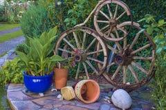 Wheel decoration on the flowerbed ii. Designed wheel dekoration on the flowerbed with flowers Royalty Free Stock Photos